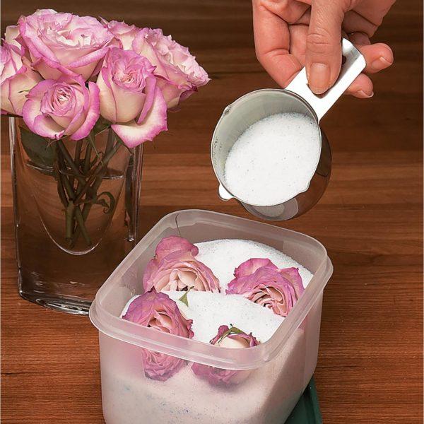Drying flowers silica gel
